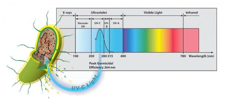 UV-C lys bølgelængde